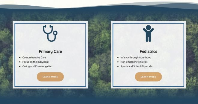 screenshot of a website offering primary care and pediatric